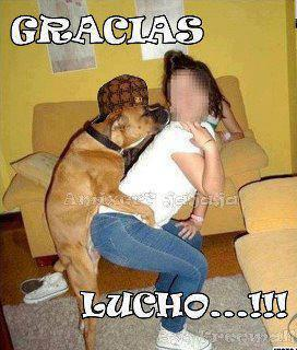 lucho?